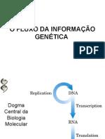 O FLUXO DA INFORMAÇÃO GENÉTICA