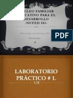 NÚCLEO FAMILIAR EDUCATIVO PARA EL DESARROLLO