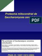 Proteoma Mitocondrial de saccharomyces cerevisiae