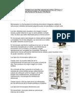 ESTUDIO COMPARATIVO ENTRE MICROSCOPÍA ÓPTICA Y MICROSCOPÍA ELECTRÓNICA