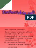 Escherichia coli =D