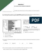 Examen Icfes Saber 11 MATEMATICAS