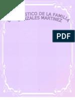 Hacer Un Diagnostico a Una Familia