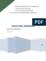 Ciclo del Oxígeno - Química Ambiental
