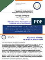 Presentacion Protocolo para Seminario Métodos Cualitativos. 11.05.12