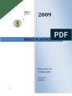 Indice plastocronico