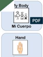 My Body in Spanish
