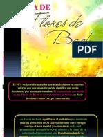 EDS-Curso Flores de Bach Kary Final