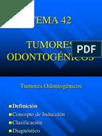 TEMA42TUMODONT