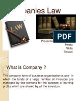 Companies Law (1)-Group9