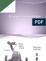 Réponse immunitaire