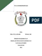 Tugas Bio Reproduksi Tria Wulandari NH 0411 300 Kebidanan C2 Nani Hasanuddin
