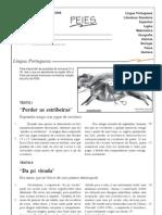 PEIES_2008_II