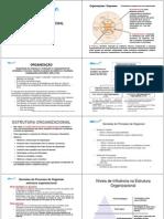 Estrutura Organizacional Curso Plano de Negocios