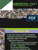 09 Metabolism Part 1