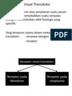 Mekanisme Sinyal Transduksi