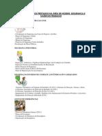 Serviços, Projectos e Formacao em HST_Marcelo Simoes 2012-