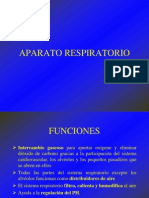 C4 APARATO RESPIRATORIO