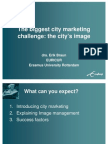 The biggest city marketing challenge