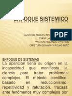 ENFOQUE SISTEMICO001