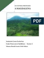 Proyecto La Magadalena por Brenda Avilés G-I-A