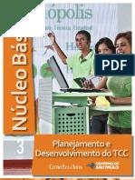 NÚCLEO BÁSICO VOL.3 - PLANEJAMENTO E DESENVOLVIMENTO DO TCC