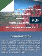 Expo Proteas