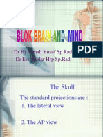 Blok Brain and Mind 1