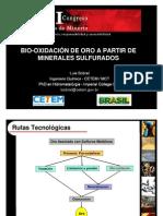 memorias_XVI_CCM_Biooxidation_gold_Sobral_22_06_2011_Version01[1]