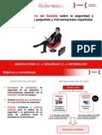Resumen Ejecutivo Estudio Seguridad Microempresas[1]