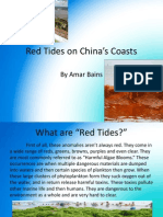 Red Tides on China's Coasts