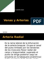 Arterias y Venas Del Antebrazo