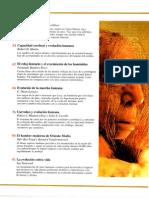 Investigacion y Ciencia - Temas 19 - Los Origenes de La Humanidad