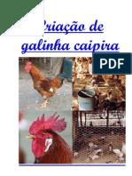 Criação Galinha Caipira - 01 Apostila