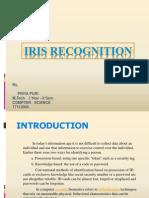 IRIS PPT