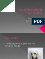 Acute Necrotizing Pancreatitis Goliath