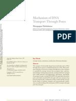 Mechanism of DNA Transport Through Pores