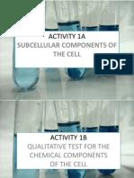 Biochemistry Activity 1a & 1b
