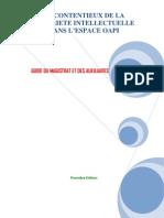 Guide Du Magistrat