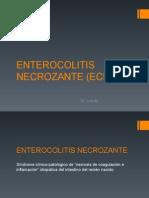 ENTEROCOLITIS NECROZANTE