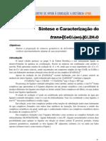 P2 Exp 04 Trans-Co Cl2 en Cl