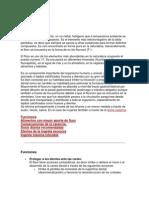 fluor bioquimica
