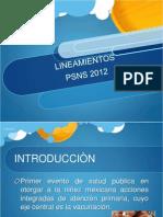 LINEAMIENTOS PSNS 2012