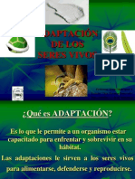 adaptacindeseresvivos-091025193933-phpapp02-110504215458-phpapp02
