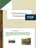 termoquimica1263