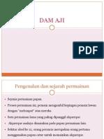 DAM AJI
