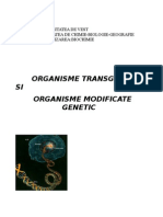 Organisme Modificate Genetic