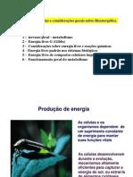 metab-bioener