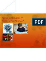 NEUROCIENCIA Y NEUROPEDAGOGIA