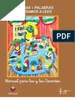 Manual Profesor 050908 CORREGIDO [1].pdf